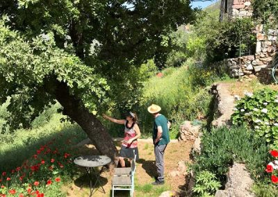 terras onder de grote eikenboom